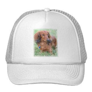 Longhaired Dachshund Baseball Cap Mesh Hat