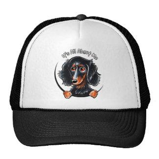 Longhaired Dachshund Black Tan IAAM Hat