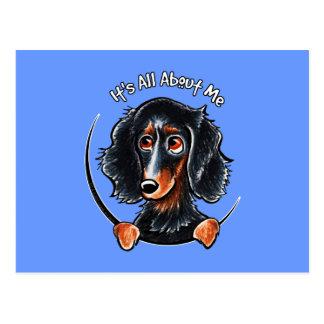 Longhaired Dachshund Black Tan IAAM Postcard
