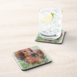 Longhaired Dachshund Cork Coasters