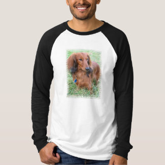 Longhaired Dachshund Long Sleeve Men's T-Shirt