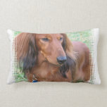 Longhaired Dachshund Pillow