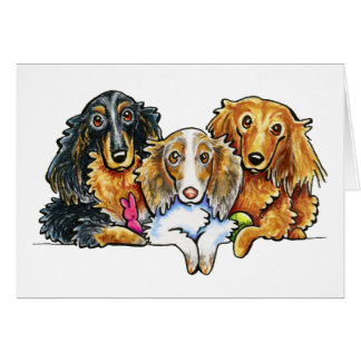 Longhaired Dachshund Trio Greeting Card