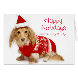 Longhaired dachshund wearing a red Christmas Greeting Card