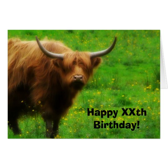 Longhaired Highland Cow with Long Horns Card