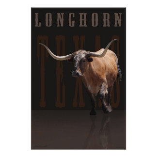 Longhorn Power Poster w/Text -40x60 -or smaller