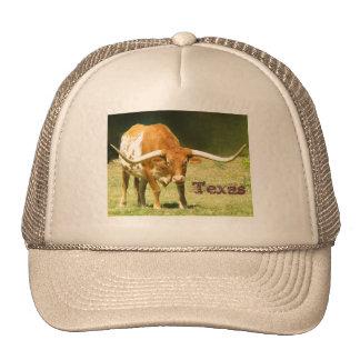 Longhorn Texas Cap