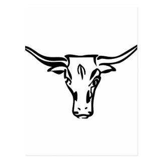 Longhorns Postcard