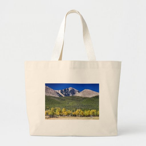 Longs Peak a Colorado Playground Canvas Bags