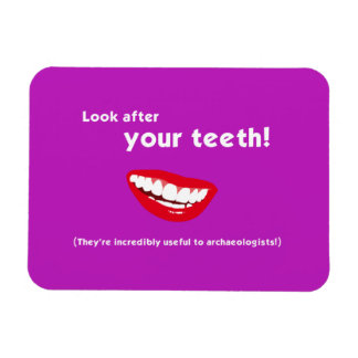 Look After Your Teeth! Fridge Magnet