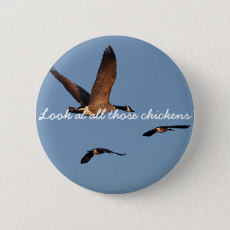 Look at All Those Chickens 6 Cm Round Badge