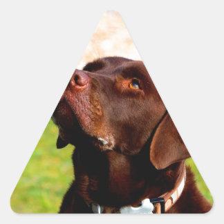 Look forward to mom love dog labrador retriever triangle sticker