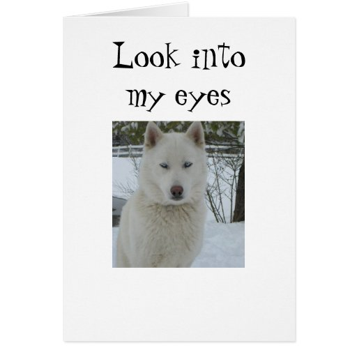 """LOOK INTO MY EYES AND HEART"" GREETING CARDS"