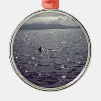 look out.jpg christmas ornament