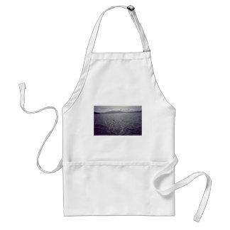 look out.jpg standard apron