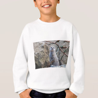 Look out sweatshirt