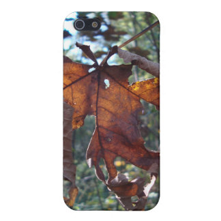 look-through leaf iPhone 5/5S cover