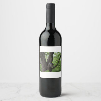 Looking for a Bite to Eat Wine Label