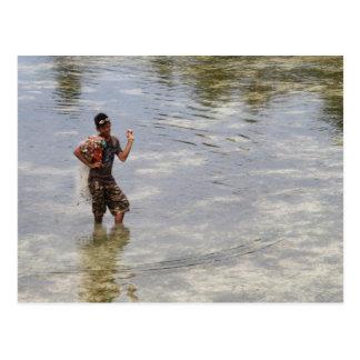Looking for shellfish postcard