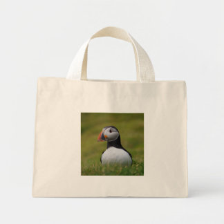 Looking for the Burrow Puffin Mini Tote Bag