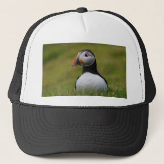 Looking for the Burrow Puffin Trucker Hat