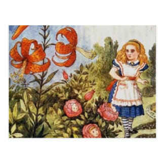 Looking Glass Alice Full Color Postcard