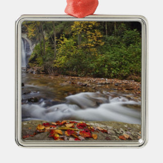 Looking Glass Falls in the Pisgah National Christmas Ornament