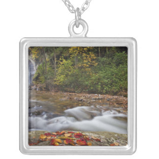 Looking Glass Falls in the Pisgah National Silver Plated Necklace