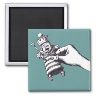 Looking Glass Refrigerator Magnet