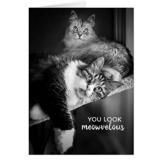 Looking Meowvelous Birthday Card