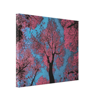 Looking Up at a Blue Sky & Pink Trees Canvas Print