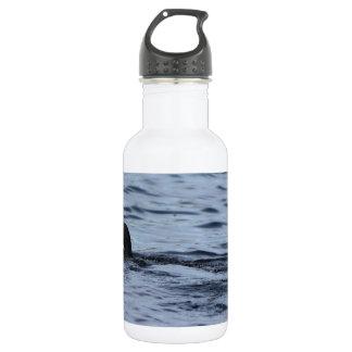 Loon 532 Ml Water Bottle