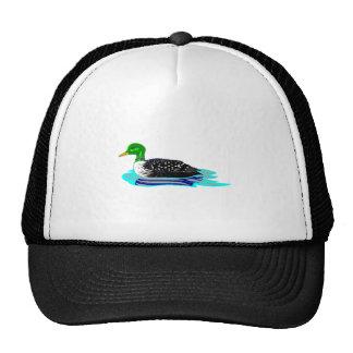 Loon Hats