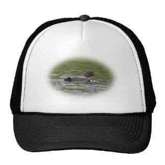 Loon Trucker Hat