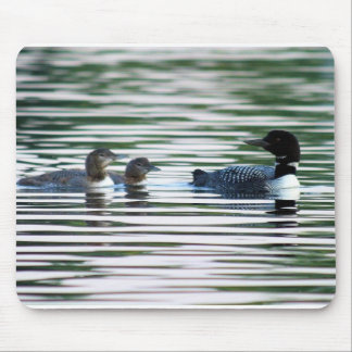 Loon Mousepad