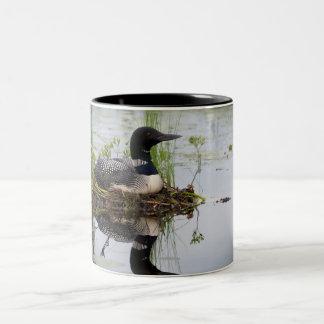 Loon on nest Two-Tone coffee mug