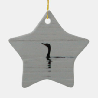 Loon on the Lake Ceramic Star Decoration