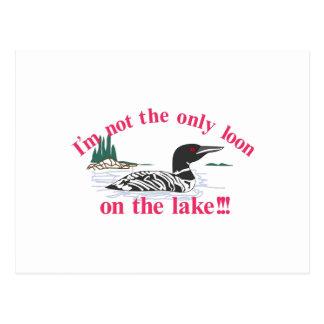 Loon on the Lake Postcard