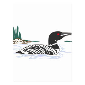 Loon Postcard