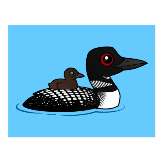 Loon with chick postcards