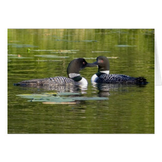 Loons Greeting Card