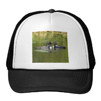Loons Hat