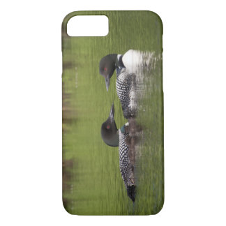 Loons with chicks phone case