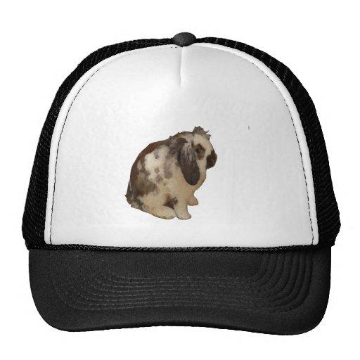 Lop Eared Baby Rabbit. Mesh Hat