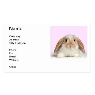 Lop Eared Rabbit Business Card