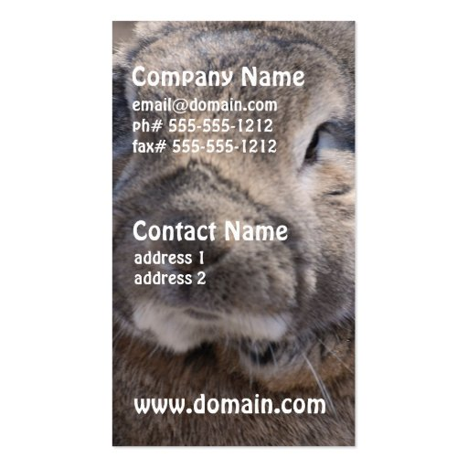 Lop Eared Rabbit Business Cards