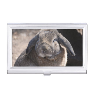 Lop Eared Rabbit Case For Business Cards