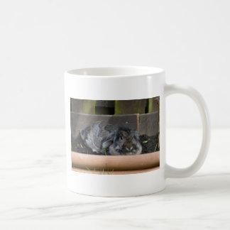 Lop eared rabbit coffee mug
