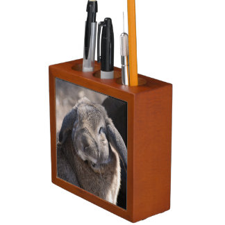 Lop Eared Rabbit Pencil/Pen Holder