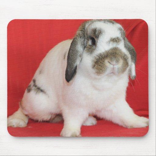 Lop-eared Rabbit Mousepads